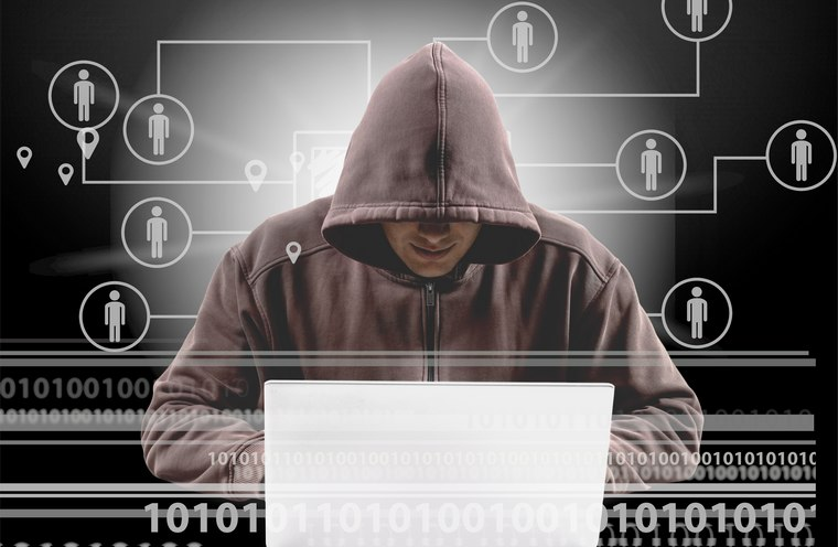 Cyber Crimes: Meaning, Types and Examples
