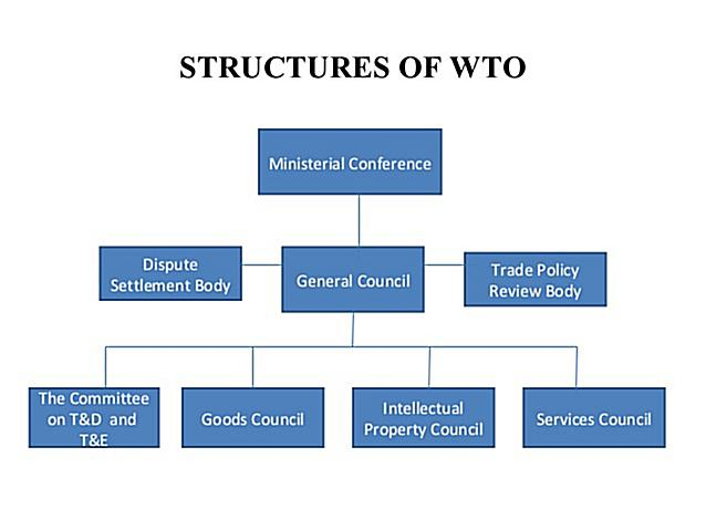 Structure of World Trade Organisation concentrate