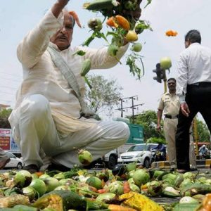 Farmers protest in Nagpur
