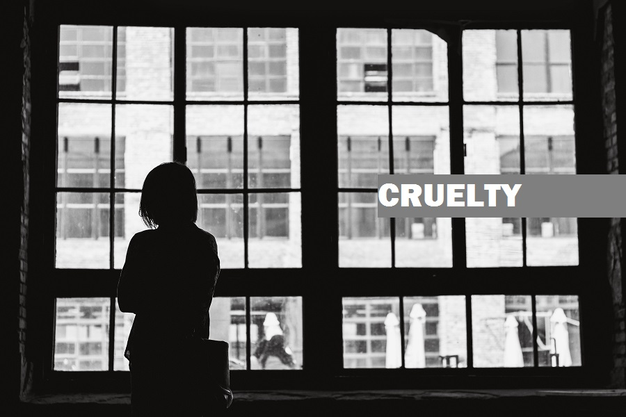 Cruelty by Husband or Relatives of Husband 498A